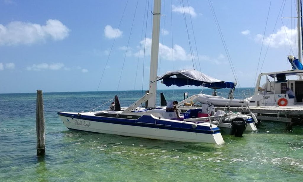 30 Ft Eagle Sailing Catamaran