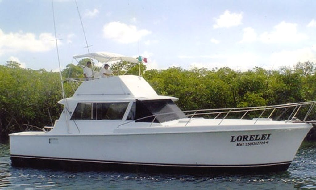 41 ft Sport Fisherman